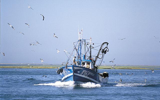 Longstay Golf Portugal Lagos Palmares Cascade Fiskebat - Sunbirdie