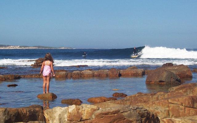 Spektakulära stränder i Cape st Francis longstay sydafrika | Sunbirdie
