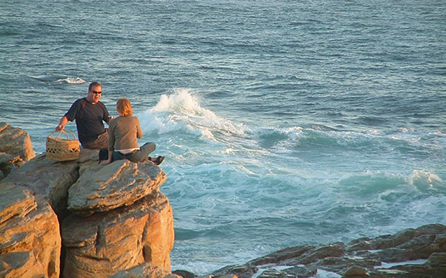 kustnära picknick under longstay sydafrika i Cape St. Francis | Sunbirdie