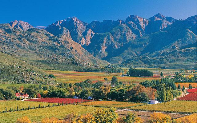 utsikt över gården under longstay sydafrika | Sunbirdie